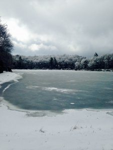Trout Lake in Winter