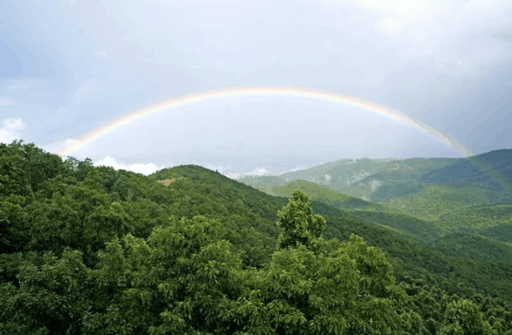 event header image 3 rainbow
